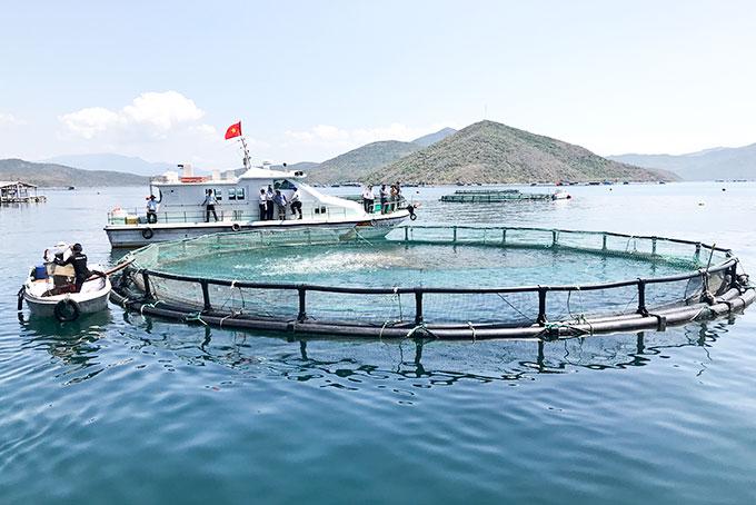 Lắp vách ngăn kiếng toilet đẹp ở Công ty TNHH Thủy Sản Nguyễn Tiến, Bà Rịa Vũng Tàu
